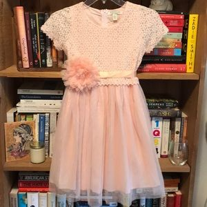 Girl's Tulle & Lace Dress